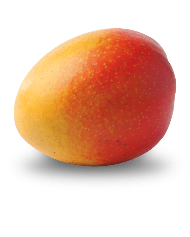 Darling Mango